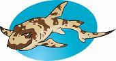 Cartoon Bamboo Shark