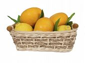 Tangerines And Lemons With Green Leaves In A Basket.