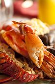 Dish with cooked crabs and lobsters