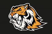 Bengal Tiger Sports Mascot Logo. Tiger Mascot. Angry Tiger Face. Vector Graphics To Design poster