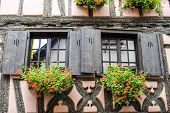 Bergheim (alsace) - House And Flowers