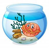 illustration of a water bowl and a shell fish on a white background