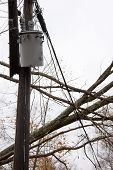 ANDOVER, NJ - OCT 30: A transformer on a pole and a tree laying across power lines over a road after Hurricane Sandy moved across the northeast in Andover, New Jersey on October 30, 2012.
