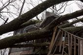 ANDOVER, NJ - OCT 30: Trees lay across the sundeck of a home after Hurricane Sandy made landfall in