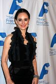 LOS ANGELES - NOV 19:  Madeleine Stowe arrives to the The Saban Free Clinic's Gala at Beverly Hilton
