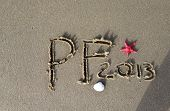 Beach Pf 2013