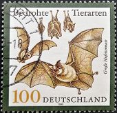 GERMANY - CIRCA 1999: A stamp printed in Germany shows bats circa 1999