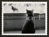UNITED KINGDOM - CIRCA 2001: A stamp printed in Great Britain shows Cat watching Bird circa 2001