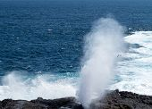 Blowhole At Suarez Point On Galapagos