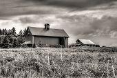 B&w Of Rural Scenic.