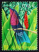 Postage Stamp France 2003 Purple-throated Carib, Bird