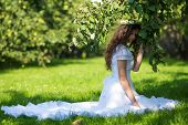 Woman In White Dress In Apple Orchard