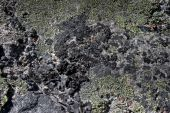picture of obsidian  - Close up of obsidian a rare volcanic rock - JPG