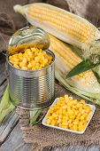 Preserved Sweetcorn
