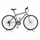 Mountain Bike Isolated On White Vector