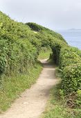 Footpath Around Perros-guirec