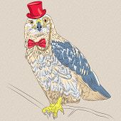 image of buzzard  - funny cartoon hipster bird Rough - JPG