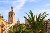 Valencia historic downtown El Miguelete and Cathedral  Micalet de la Seu in spain