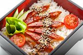 Japanese Cuisine - Unagi (Smoked Eel) on Rice with Sesame and Ginger