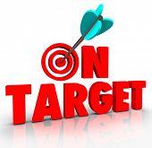 On Target Words Arrow Bulls-Eye Perfect Goal Achieved