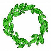 Green fresh laurel leaves wreath frame on white background, vector illustration