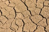 Picture of dry cracked earth.