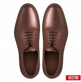 Male Fashion Classic Brown Shoes. Vector.