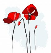 Red poppies on a sky background