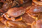 Crab in Market