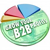 Grow Your B2B Profits words on a 3d pie chart showing increased profits, revenues and earnings in sa