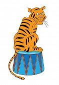 Circus vector illustration, Tiger on a pedestal