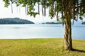 image of chan  - Landscaped lawns for relaxing waterfront under the tree at Kaeng Kra Chan National Park in Phetchaburi Province Thailand - JPG