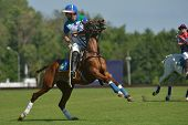 TSELEEVO, MOSCOW REGION, RUSSIA - JULY 26, 2014: Misha Rodzianko of Moscow Polo Club in action in th