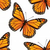 Seamless pattern with monarch butterflies