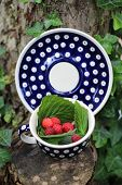 Raspberries in polish pottery from Boleslawiec / Bunzlau