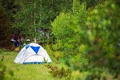 Tent On The Forest Meadow