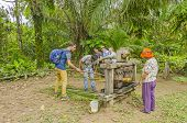 SAN MIGUEL DEL BALA, BOLIVIA, MAY 11, 2014: Tourists produce sugar cane juice in wooden press at the indigenous community while local people help them to do it