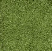 Texture Football Pitch