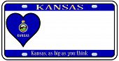 picture of kansas  - Kansas state license plate in the colors of the state flag with the flag icons over a white background - JPG
