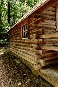 Cabaña de troncos