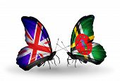Two Butterflies With Flags On Wings As Symbol Of Relations Uk And Dominica
