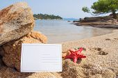 Blank postcard and red starfish on the sandy beach