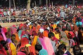 Crowd Of People At Pushkar Fair