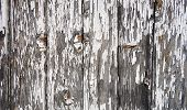 close up shot of old wooden fence with obsolete paint