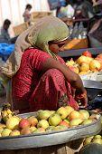 Beautiful Indian Girl Selling Yellow Tomatoes