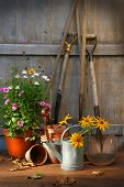 Garden Shed With Tools And Pots