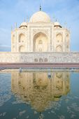 Reflection In The Water Of The Taj Mahal.