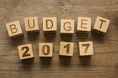 picture of reveillon  - Budget for 2017 - JPG
