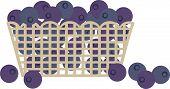 Blueberry blueberries market grocery fruit basket