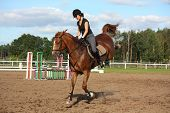 Brunette Woman Riding Playful Chestnut Horse